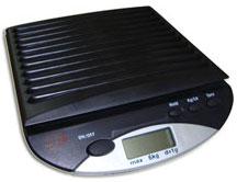 Бытовые весы 2к821 серии ДАЧНИК