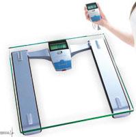 Весы бытовые электронные ЕВ9101